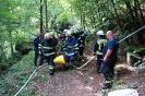 8. září 2013 proběhlo v příhraničním prostoru SRN společné cvičení hasičských dobrovolných jednotek obce Reinhardtsdorfu-Schöny a Děčína XI-Horního Žlebu zaměřené na hašení požáru v Labském kaňonu s dálkovou dopravou vody a převozem raněného přes Labe